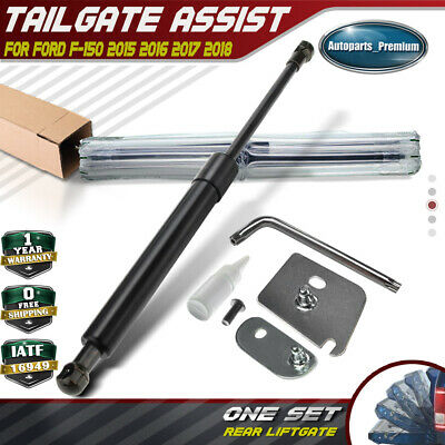 1 Piece of Tailgate Assist Shock Struts for Ford F-150 2015 2016 2017 DZ43204