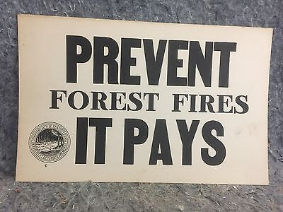 Prevent Forest Fire It Pays PA Department Forest & Water Poster
