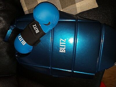 martial arts body protector and gloves