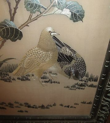 Fantastic  Quality 1900's Antique Framed Japanese Silk Embroidery With Doves