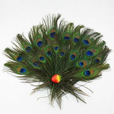 "10Pcs Real Natural Peacock Tail Eyes Feathers 10-12"" Wedding Party Craft Decor"