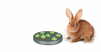 Trixie Interactive Rabbit Snack Treat Board Training Cage Hutch Game Toy 62812