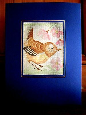 handmade completed cross stitch card 8 x6 jenny wren bird birthday any occasion. Black Bedroom Furniture Sets. Home Design Ideas