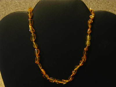 Natural Baltic Amber (Honey) Necklace 34 cm Short Length for Age 3 & over FPH