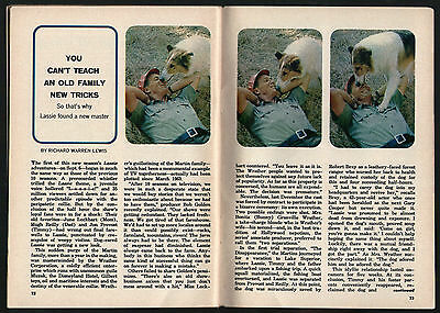 1964 Tv Guide Article ~ LASSIE ~ Worlds Most Famous Collie Dog ~ 4 PAGES
