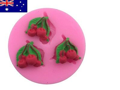 Silicone Mould- Cherries (Standard-Size)