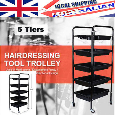 Beauty SPA Hairdresser Coloring Hair Salon Trolley Rolling Storage Cart 5 Tier G