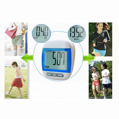 Multi-Function Bright Electronic Pedometer Steps Counter Large LCD Display ZM DP