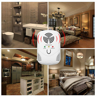 Electronic Ultrasonic Anti Mosquito Insect Repeller Household Mouse Repeller DP