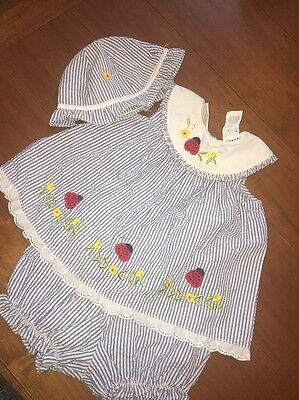 Little Bitty Blue Seersucker Ladybug Floral Outfit Bloomers Hat Sz 6-9m