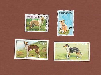 Smooth Collie dog MNH postage stamps and cards - set of 4