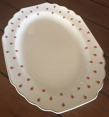 1950's WS George Lido Blushing Rose Red Flowers Oval Serving Platter Plate bx19