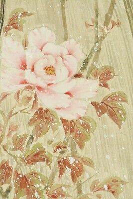 Hanging Scroll Japanese Painting Peony Sparrow ink Japan Antique Picture b501