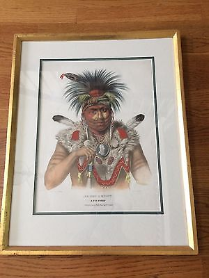 McKenney and Hall American Indian Lithographs - Set of 5 - Beautifully Framed