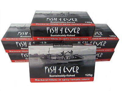 Fish 4 Ever Mackerel Fillets in Spicy Tomato Sauce 125g sustainably fished canne