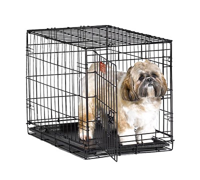 iCrate Pet Crates 24 Inch with Divider and Single Door for Pets 11 to 25 Pounds