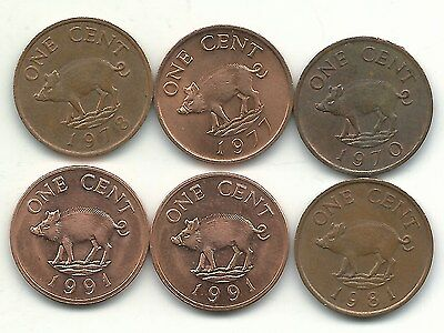 HIGH GRADE LOT 6 BERMUDA 1 CENT WILD BOAR COINS-1970,1977,78,1981,(2)1991-jul999