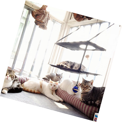 L.S Cat Hammock Kitty Sunny Bed Window Perch Cats Sofa (Double, Brown)