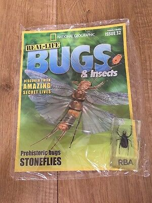 Real Life Bugs & Insects Issue 32 - Stoneflies
