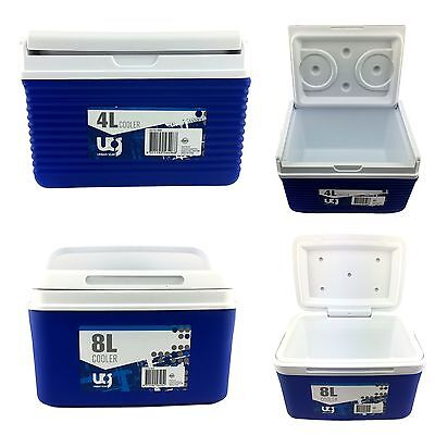New Personal Cooler Box Ice Cool Carry Box 4L/8L Summer Picnic Box