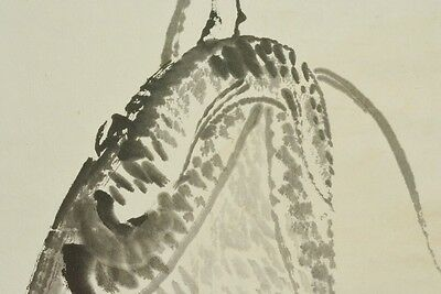 Hanging Scroll Japanese Carp Painting Antique Japan Asian Art ink Antique a586