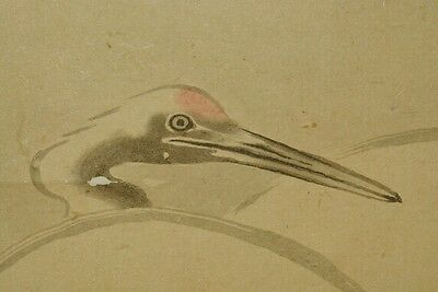 Hanging Scroll Japanese Painting Crane Pic Japan Antique Asian Art Old ink a519