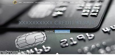 Credit Repair Business, Repair Letters and Website with Hosting & Domain Name
