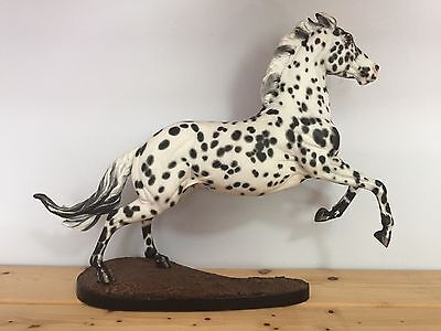 Breyer Custom Appaloosa Wyatt!
