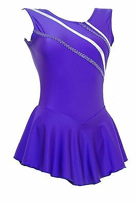 Skating Dress -Purple LYCRA / Metalic stripes NO SLEEVE ALL SIZES AVAILABLE