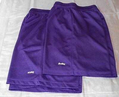 Lot of 2 Size Youth Large Purple Mesh Athletic shorts - Royal Purple - boy girl