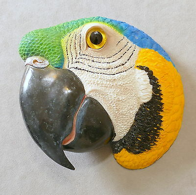 Wall Art Resin Bird May Rich Company Retired McCaw Blue Gold Big Head 8""