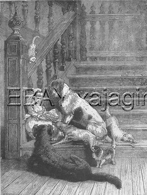DOG Flat-Coated Retriever & Girl, HUGE 1880s Antique Print