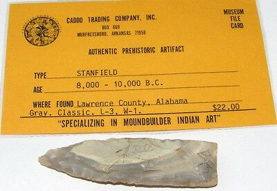 Authentic Stanfield Arrowhead Spear Point Lawrence Co AL Indian Artifact COA