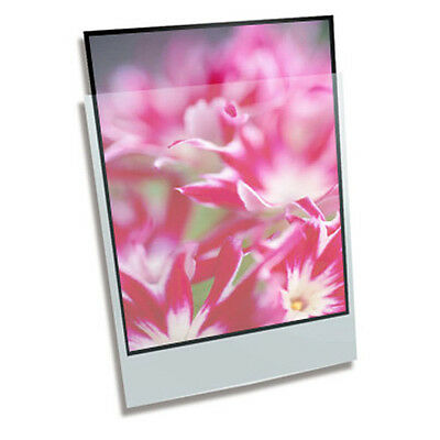 100 x CLEAR FILE 4x5 Print Protector Pages Sleeves Archival Storage # 01B