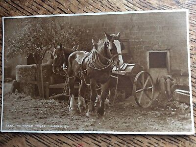 Vintage Working Horse Postcard - Farming - By Judges - 'The Trace Horse '