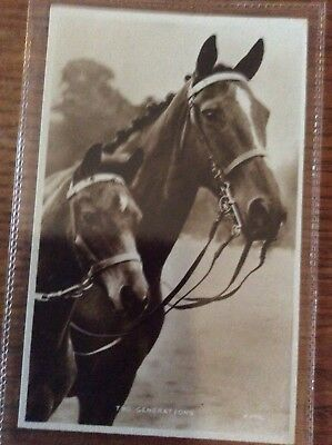 Two Generations - Real Photo Valentine's Horse Postcards - Perfect Unused Card