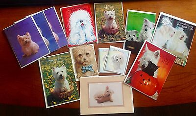 Lot of 13 VTG Greeting Cards ALL Dogs Maltese West Highland Terrier Bichon NOS
