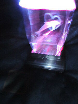 Dolphin Jumping through Heart Optic Light-free shipping