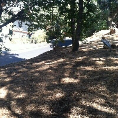 Land for sale in Lake ArrowHead