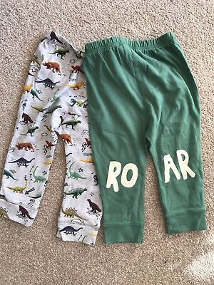 Next Boys 9-12 Months Dinosaur Trousers / Leggings BNWT
