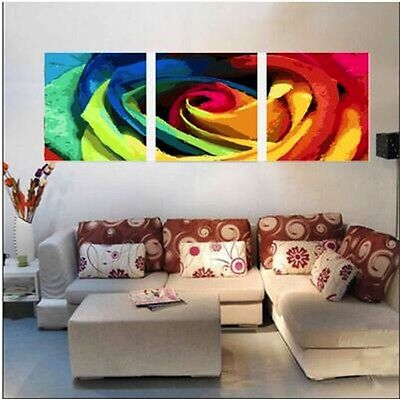 Set of Three Painting By Numbers Kit Flower 3*50*40cm F3P026 Home Decor S5 Int