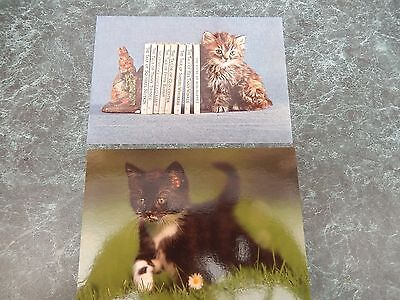 2 x Cat Postcards, unused in Very Good Condition