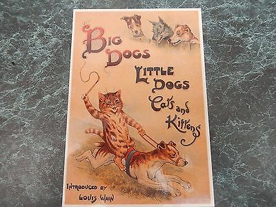 1 x Cat Postcards, unused in Very Good Condition