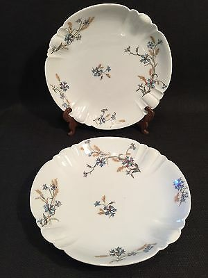Antique Haviland & Co Limoges Pair Of Plates Decorated With Blue Flowers 1888-96