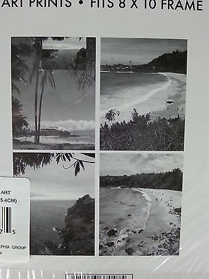 "Set of 4 RARE Very Nice Island Beaches ART PRINTS Fits 8""x10"" Frame"