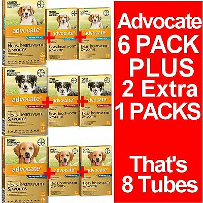 Advocate Flea Heartworm & Worm Treatment for Dogs 6 Pipettes + EXTRA 2 Pipettes