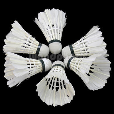 6pcs Durable  White Feather Shuttlecocks Badminton Training  Outdoor Sport