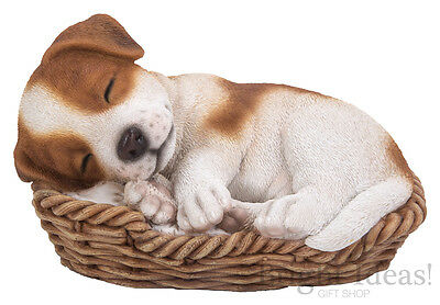 Vivid Arts - PET PALS PUPPY DOG IN BASKET & JRT BOX - Jack Russell Terrier