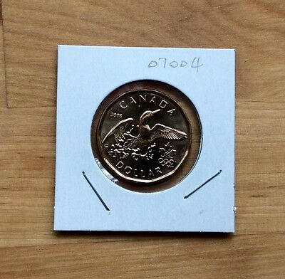 Canada 2008  Lucky Loonie One Dollar Coins, BU -  No Tax