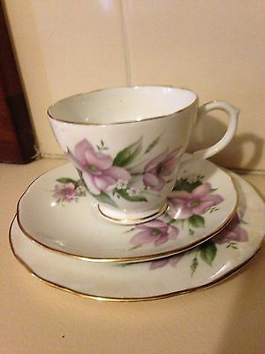 Vintage Duchess Wood Anemone None China Tea cup Trio Staffordshire England